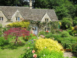 WoW! Gorgeous front garden in the Cotswolds , Arthur S - June 2014