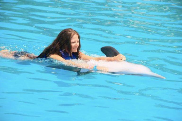 Cabo Dolphin swim - Los Cabos