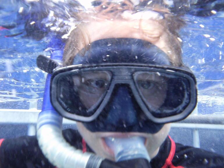 shark dive 022 - Oahu