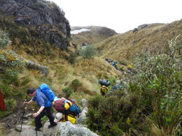 And the porters carrying the heavy loads , Rodrigo E - November 2011