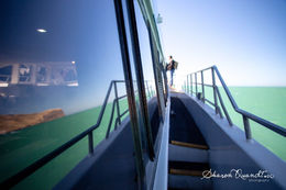 Endless photo opportunities on board , shadania - February 2015