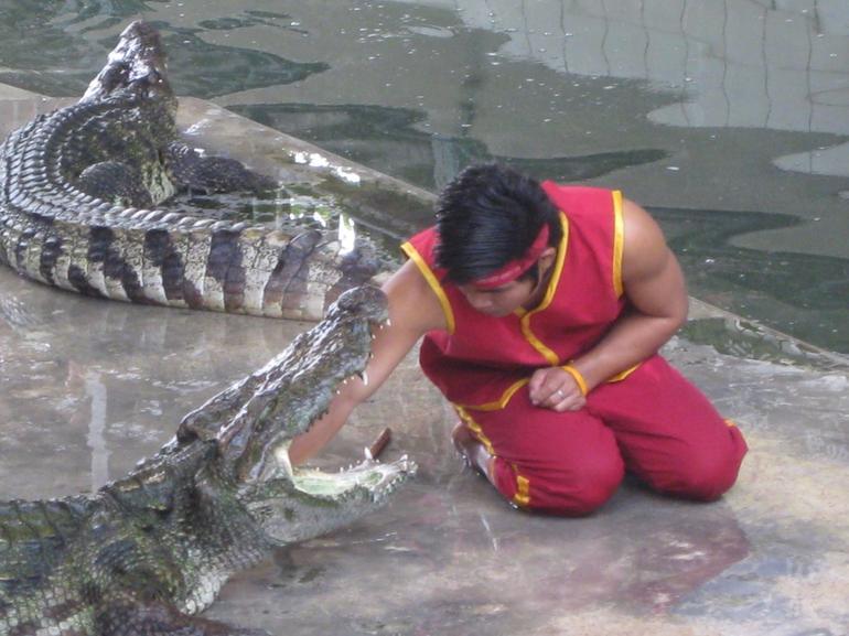 Crocodile show - Bangkok