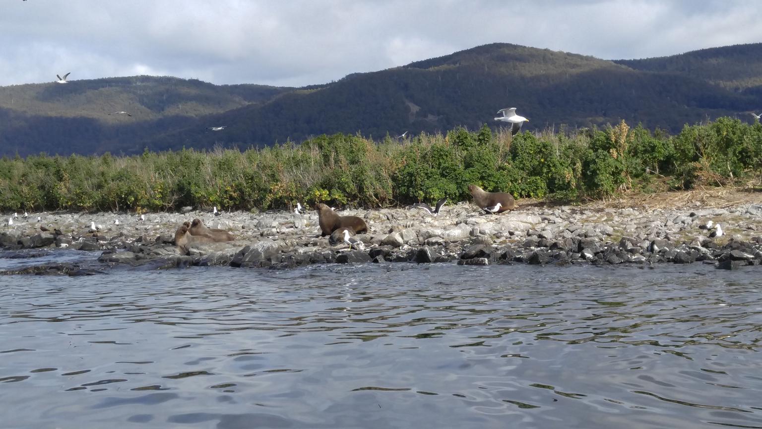 MÁS FOTOS, Tasmanian Seafood Gourmet Full-Day Cruise Including Lunch