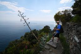 Hiking from Corniglia to Vernazza, Jennifer D - June 2010