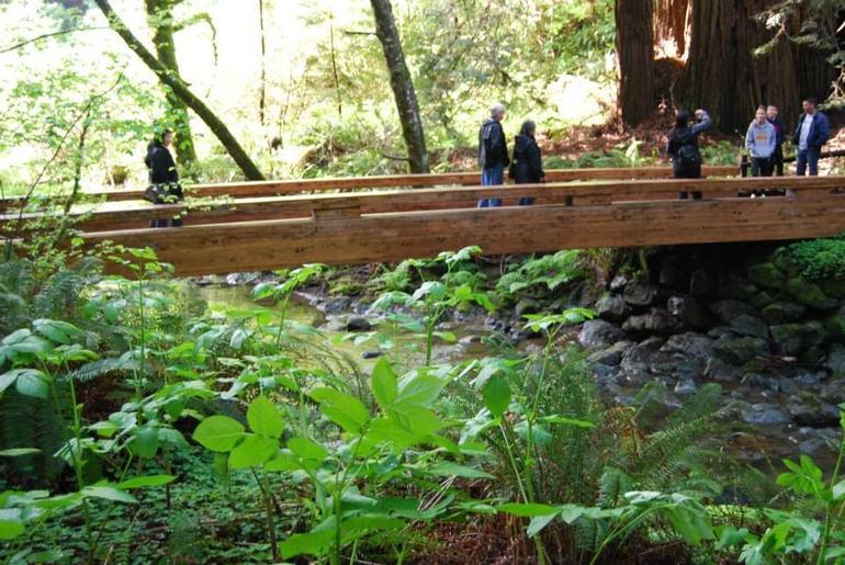 excursion-giant-redwoods-et-sausalito-avec-transport