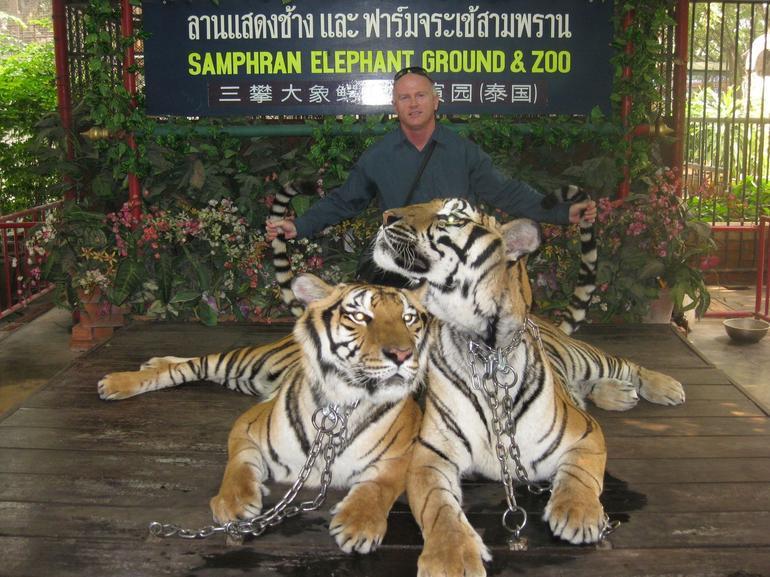 Tigers - Bangkok