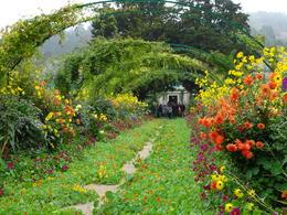 Gardens at Giverny , Ericka B - June 2017