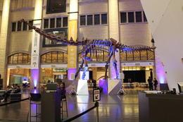 Royal Ontario Museum, Toronto , Kathryn L - November 2017
