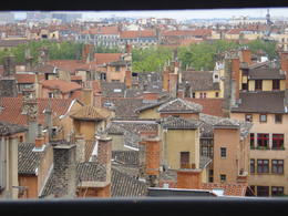 Lyon Rooftops, Cat - January 2012