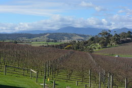 Breathtaking view from the winery. , sismartin - June 2015
