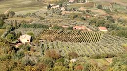 View of the countryside from Montepulciano , Teri - October 2016