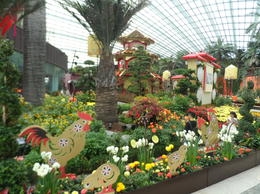 Gardens by the bay , DANA H - March 2017