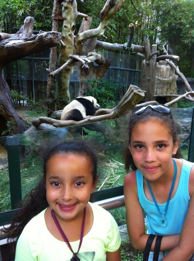 Skip the Line: San Diego Zoo Ticket photo 34