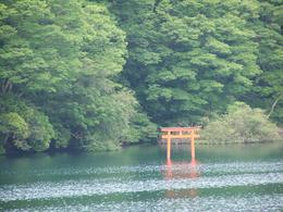 Serene cruise on Lake Ashi. Relieved locals erected this shrine after the dragon was tamed and no longer ate their children. Beautiful area. , Carla K - July 2014