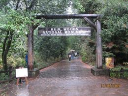 Entering the Muir Woods Park. - November 2009