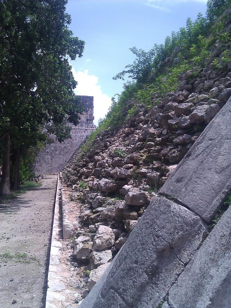 Nature - Cancun