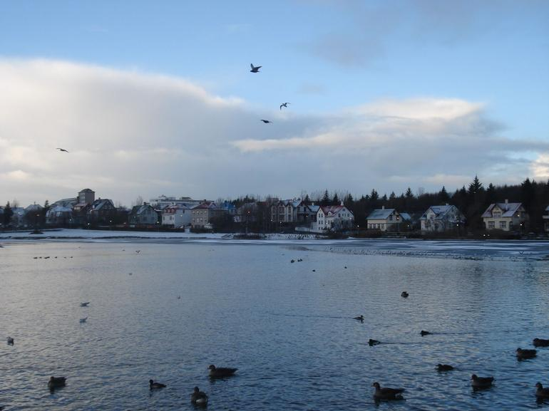 Tjornin - Reykjavik