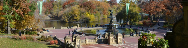 Central park main view - New York City