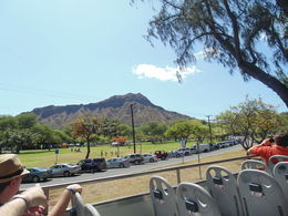 A view of Diamond Head from the top of the bus. , Charles C - June 2015