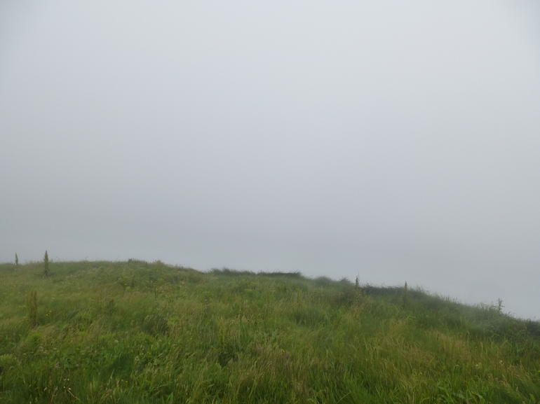 Cliffs of Moher - what we saw - Dublin