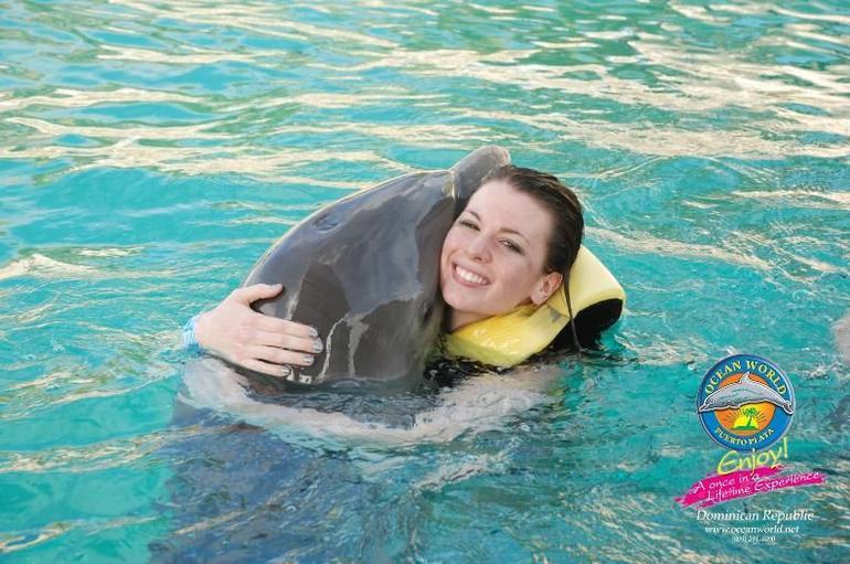 Dolphin 2 - Puerto Plata