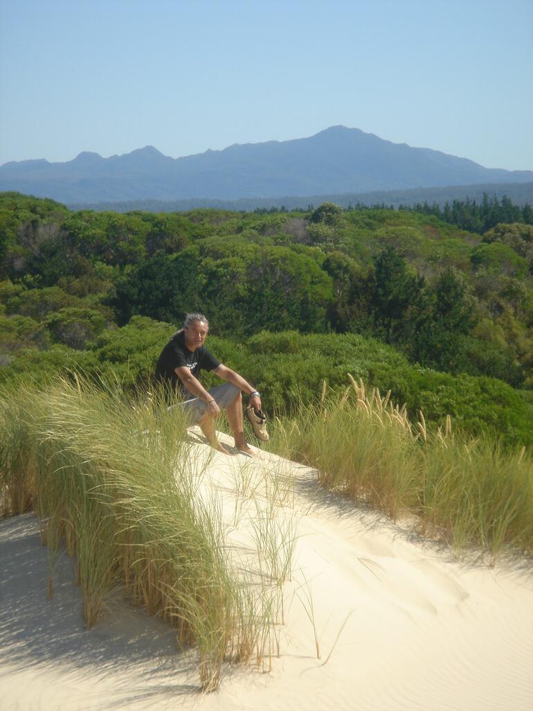 Henty Dunes and Huon Pine trees near Strahan -