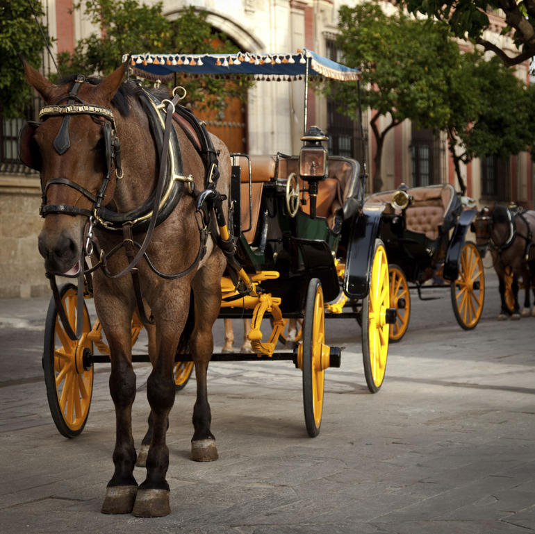 Horse carriage in Seville - Seville