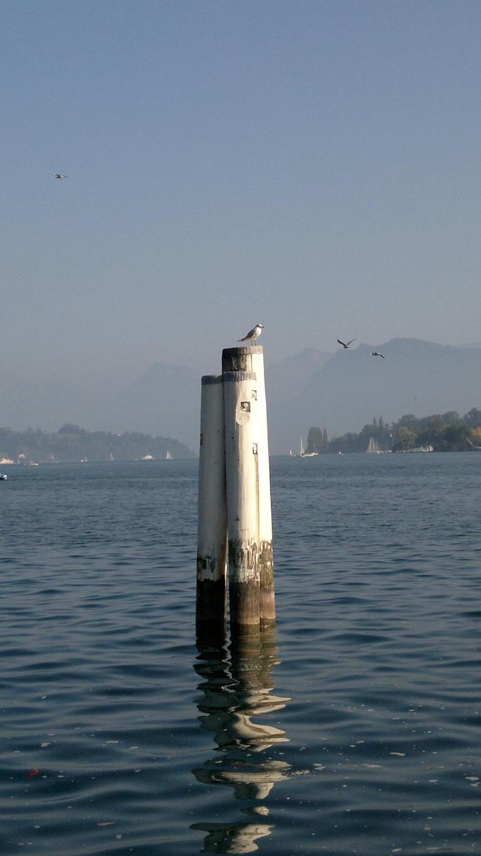 water - Zurich