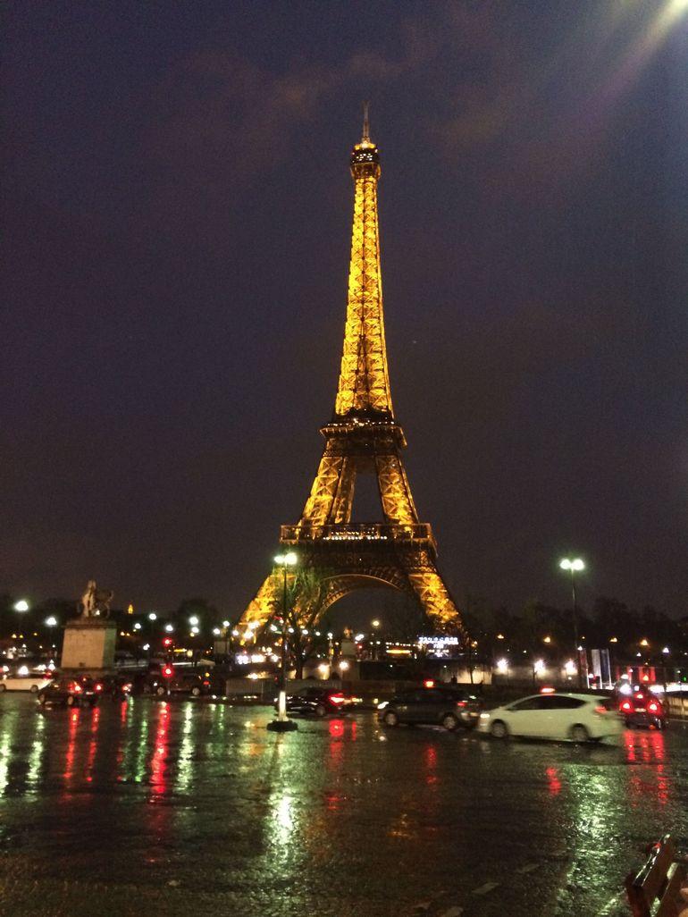 Skip the Ticket Desk Line: Eiffel Tower and Seine River Cruise