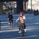 Electric-Powered Biking Tour: Asakusa, Akihabara, and Imperial Palace, Tokyo, JAPON