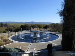 View from the winery Artesa. , Ashley D - January 2013