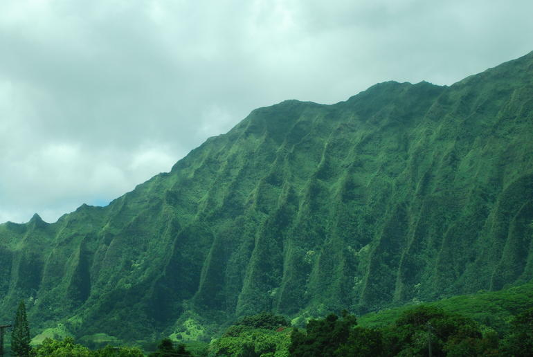 Mountain views - Oahu