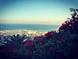 Ba'hai Gardens, Haifa , mandymainstudios - December 2016