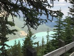 Peyto Lake , Catherine P - July 2017