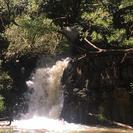 Al Este de las cascadas Maui y caminata por la selva., Maui, HI, ESTADOS UNIDOS