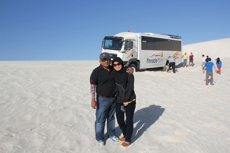 Pinnacles Desert, Koalas, and Sandboarding 4WD Day Tour from Perth photo 12