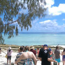 Excursión de 3 días al sur de la Gran Barrera de Coral, con visita a la isla Lady Musgrave, Surfers Paradise, AUSTRALIA