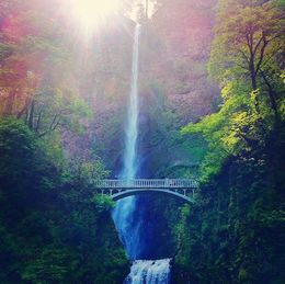 Picture of the Multnomah Falls taken from the bottom viewing platform of the falls. , Alice C - May 2015