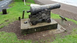 Historical Cannon , George W - November 2014