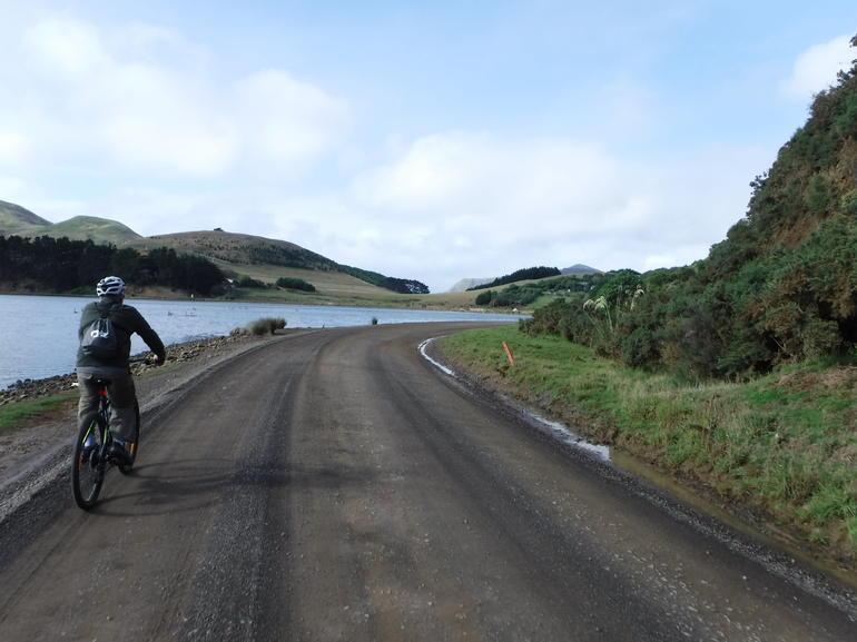 Otago Peninsula Bike Tour