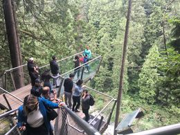 Included with Capilano Park Entrance! , Steven S - July 2016
