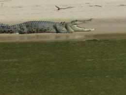 East Alligator River , Niv A - July 2014
