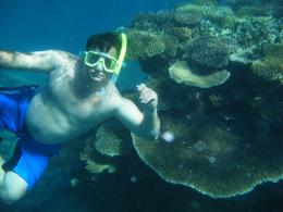 Snorkeling was phenomonal!! , Don S - June 2012