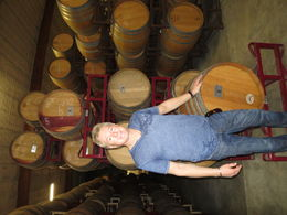 barrels of wine , Dan S - April 2015