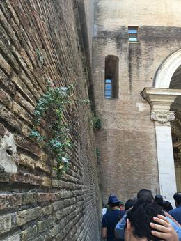 A portion of the wall separating the Vatican from the outside world , Julia E - August 2016