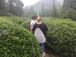 Cindy with my wife discussing the green tea plans. , Carl S - October 2017