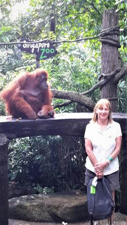 Photo time. Looks like the Orangutan is more interested in me , Evelynne C - November 2017