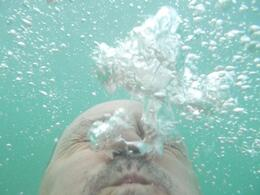 I am underwater with my Nikon camera. It's true, it is waterproof! , david d - December 2014