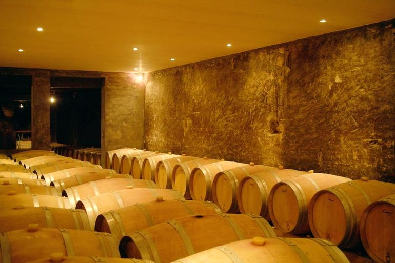 cellar at Taillan - Bordeaux