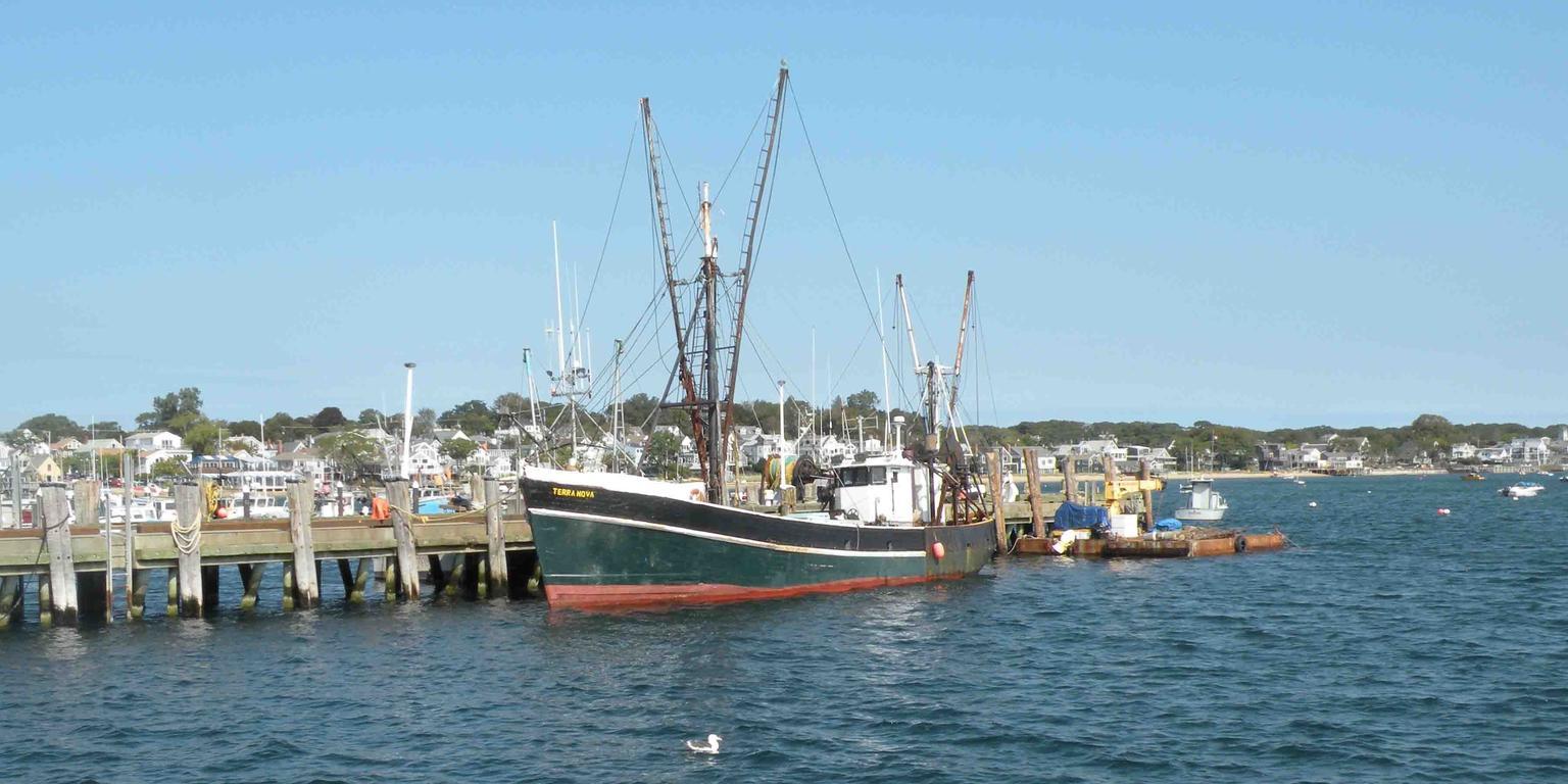 MÁS FOTOS, Excursión de ida y vuelta en ferry rápido a Cape Cod